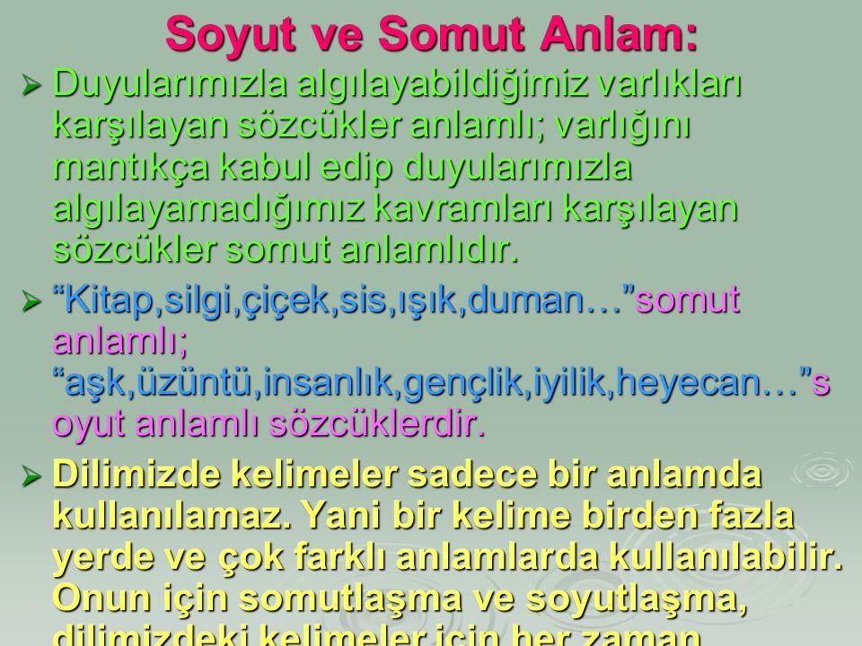 Soyut ve Somut Anlam: