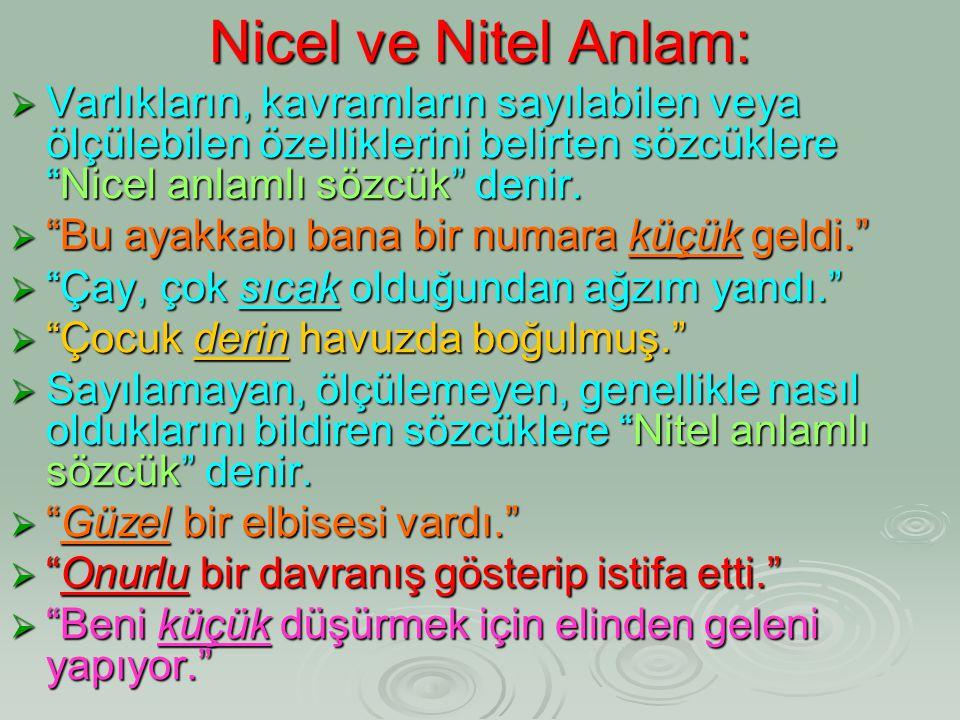 Nicel ve Nitel Anlam: Varlıkların, kavramların sayılabilen veya ölçülebilen özelliklerini belirten sözcüklere Nicel anlamlı sözcük denir.