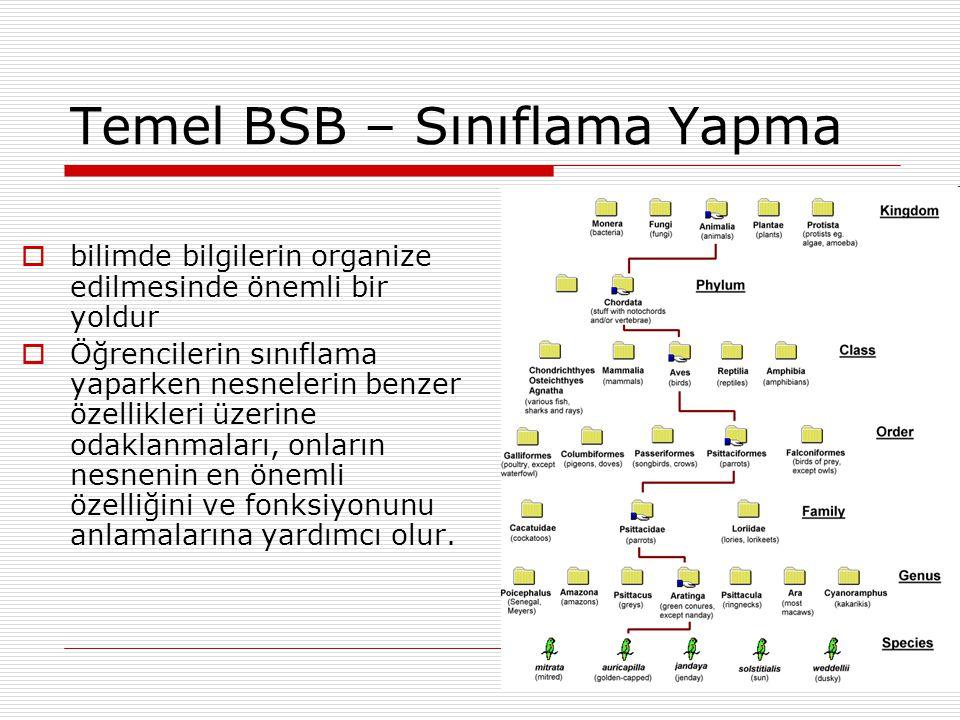 Temel BSB – Sınıflama Yapma