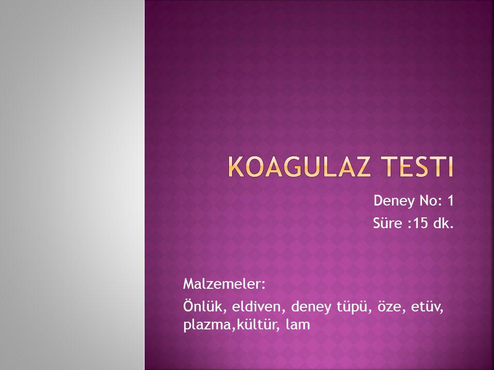 Koagulaz Testi Deney No: 1 Süre :15 dk. Malzemeler: