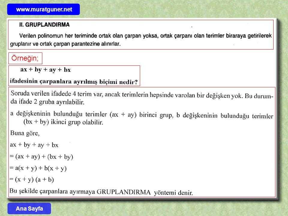 www.muratguner.net Örneğin; Ana Sayfa 12