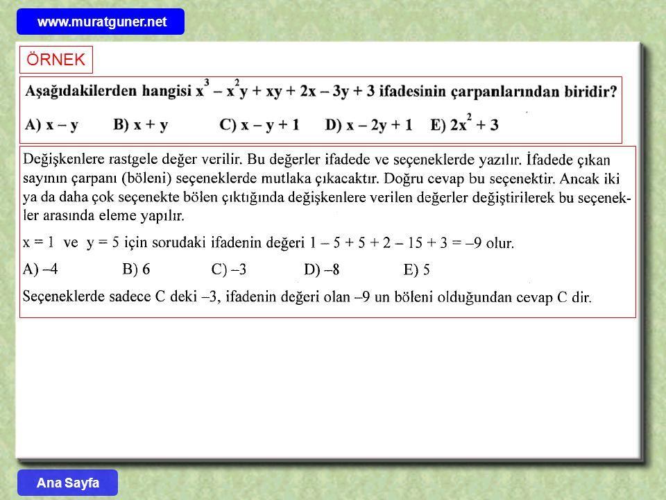 www.muratguner.net ÖRNEK Ana Sayfa 17