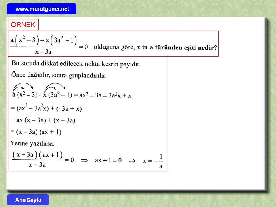 www.muratguner.net ÖRNEK Ana Sayfa 18