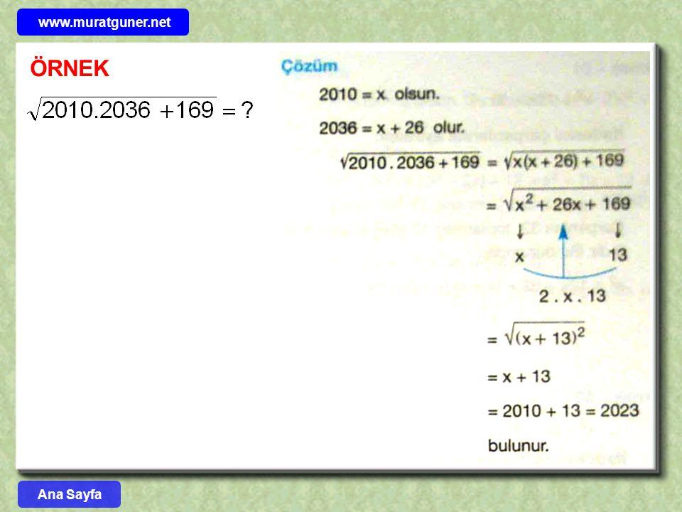 www.muratguner.net ÖRNEK Ana Sayfa 37