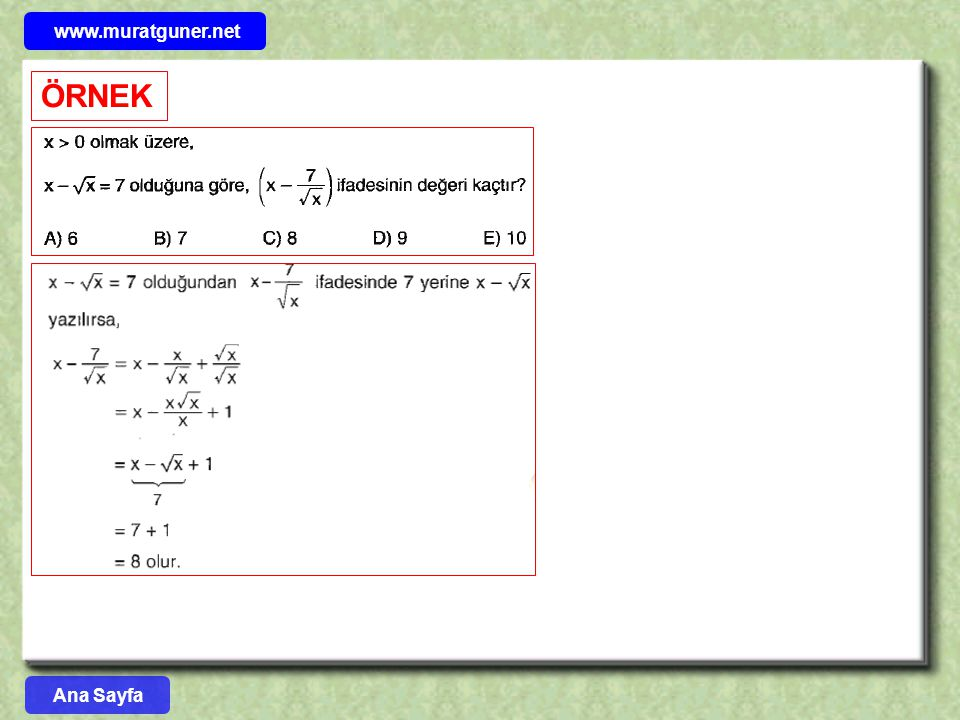www.muratguner.net ÖRNEK Ana Sayfa 39