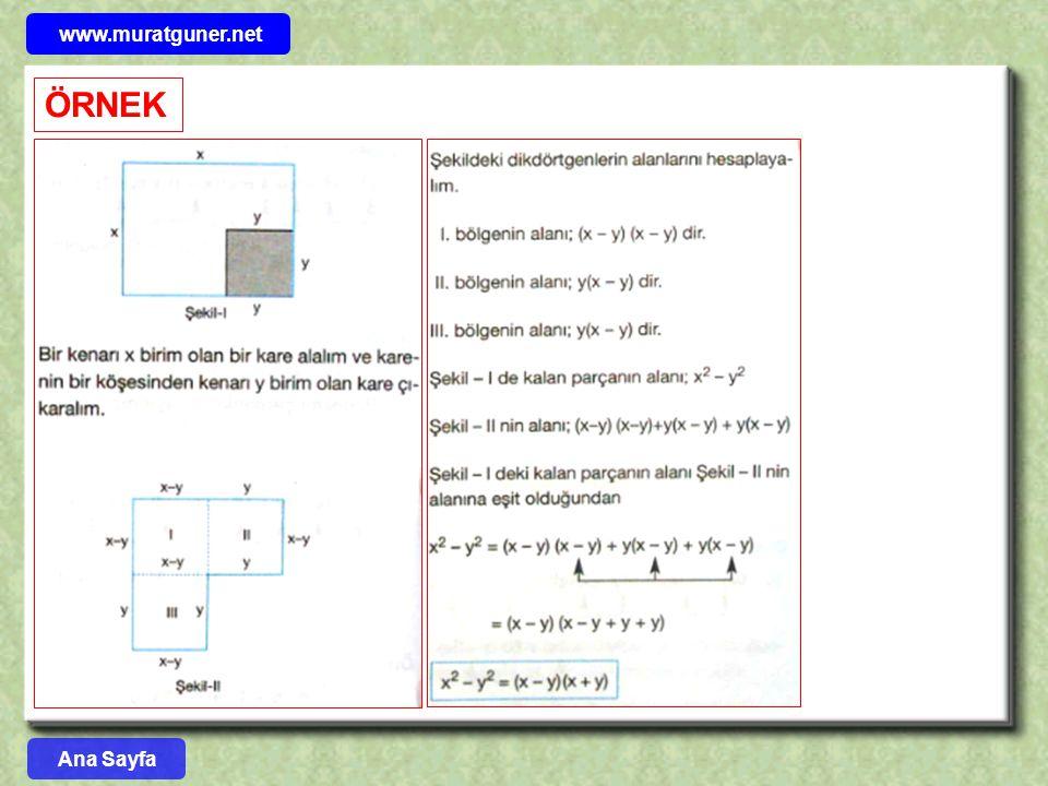 www.muratguner.net ÖRNEK Ana Sayfa 43
