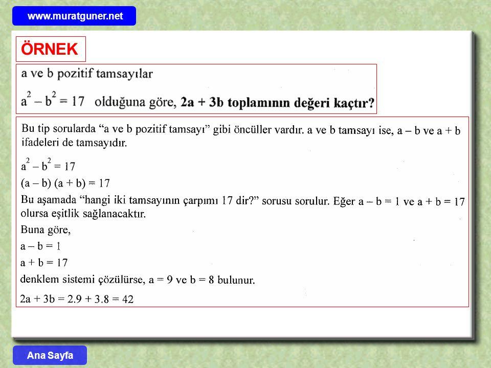 www.muratguner.net ÖRNEK Ana Sayfa 59