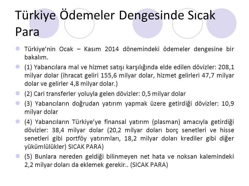 Türkiye Ödemeler Dengesinde Sıcak Para