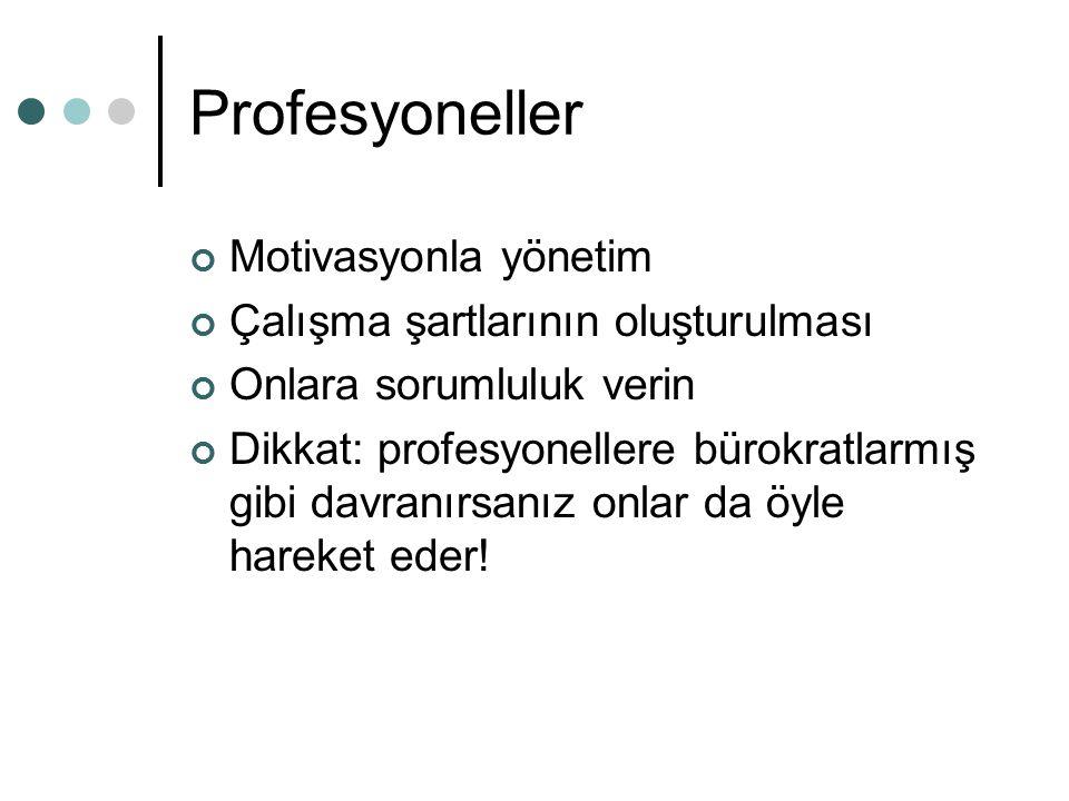 Profesyoneller Motivasyonla yönetim Çalışma şartlarının oluşturulması