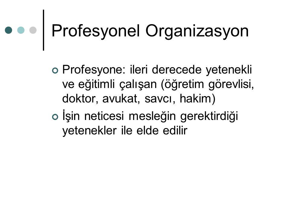 Profesyonel Organizasyon