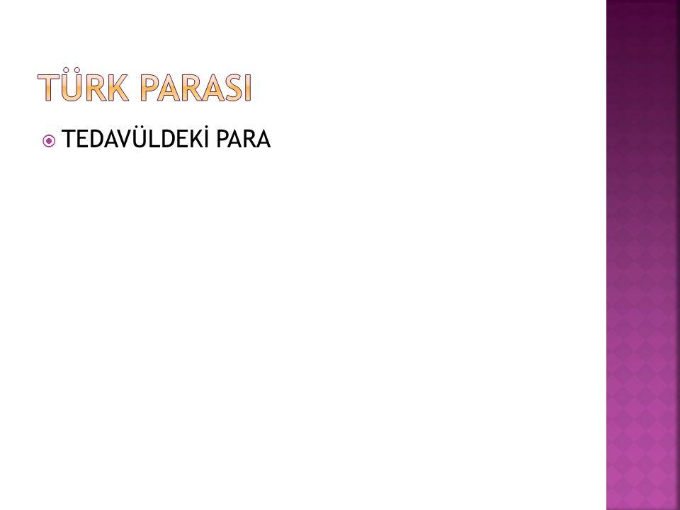 TÜRK PARASI TEDAVÜLDEKİ PARA