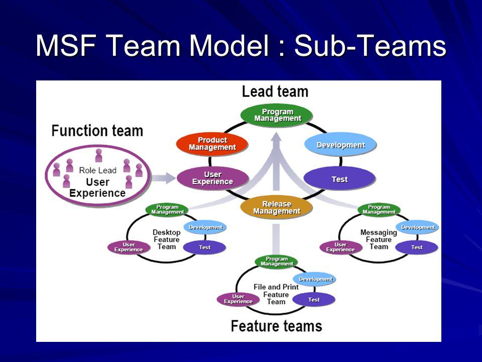 MSF Team Model : Sub-Teams