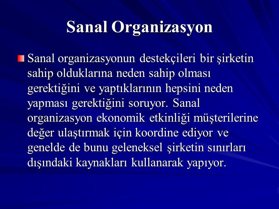 Sanal Organizasyon