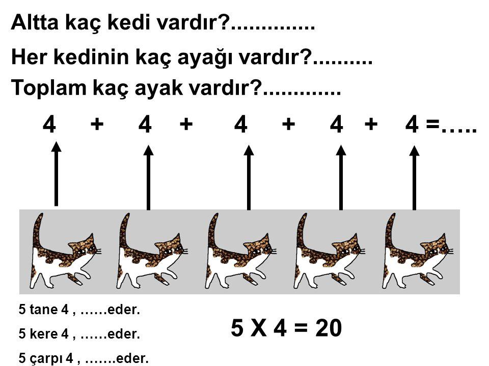 4 + 4 + 4 + 4 + 4 =….. 5 X 4 = 20 Altta kaç kedi vardır ..............