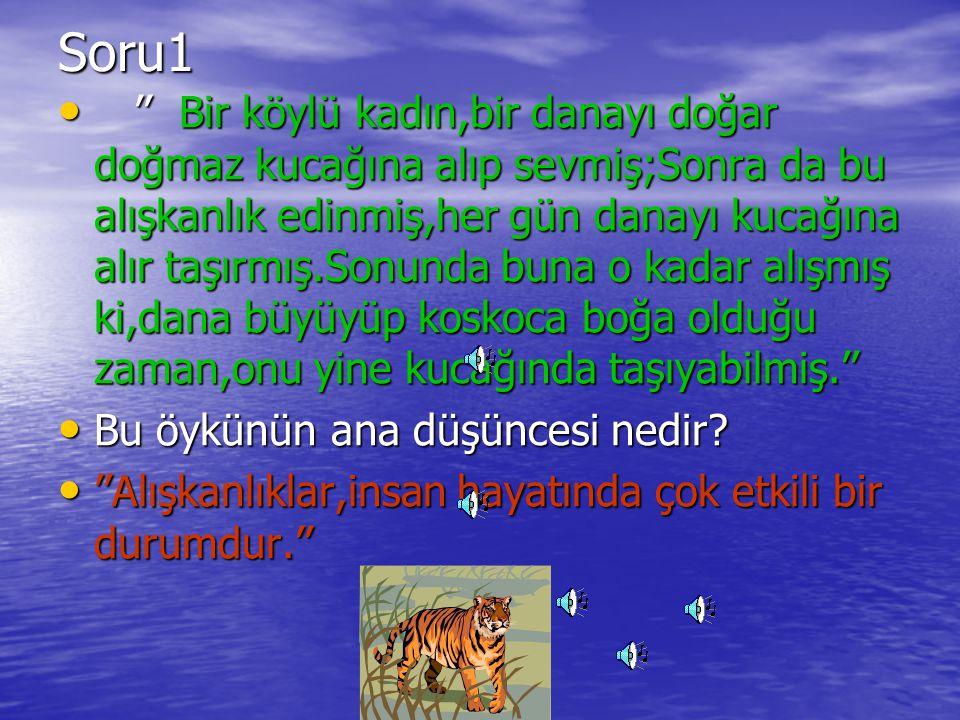 Soru1