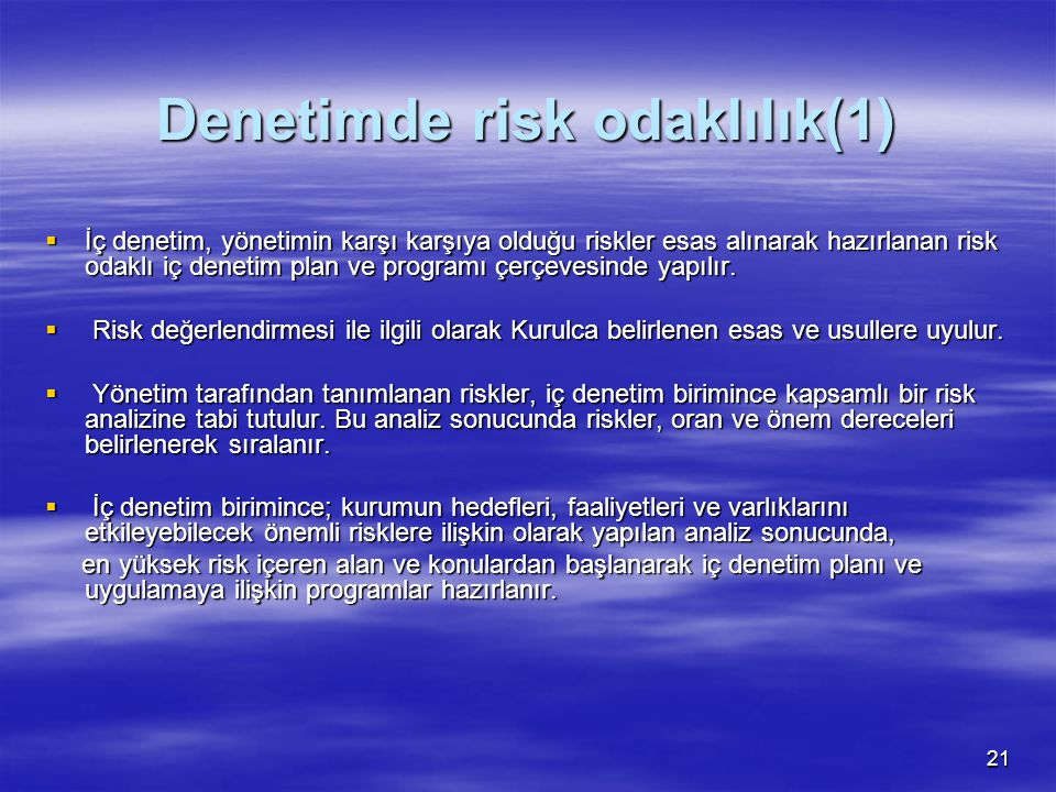 Denetimde risk odaklılık(1)