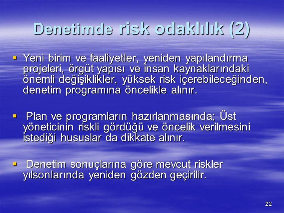 Denetimde risk odaklılık (2)