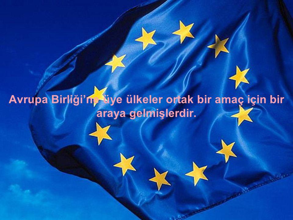 Avrupa Birliği'ne üye ülkeler ortak bir amaç için bir araya gelmişlerdir.