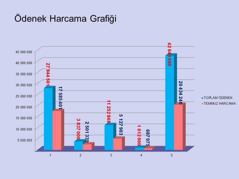 Ödenek Harcama Grafiği