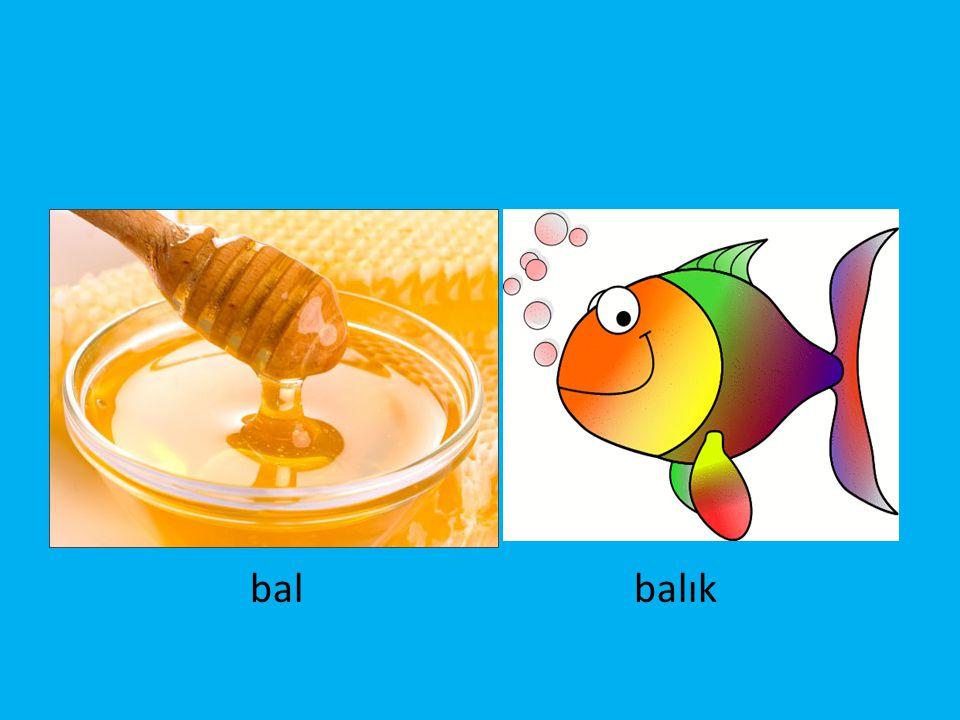 bal balık