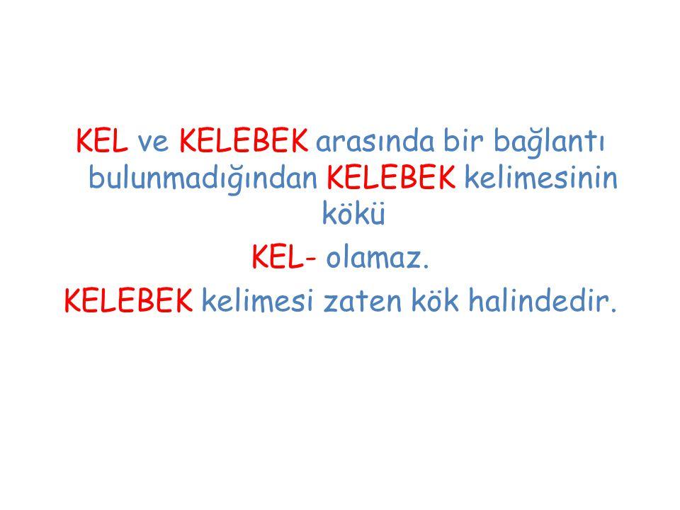KEL ve KELEBEK arasında bir bağlantı bulunmadığından KELEBEK kelimesinin kökü KEL- olamaz.