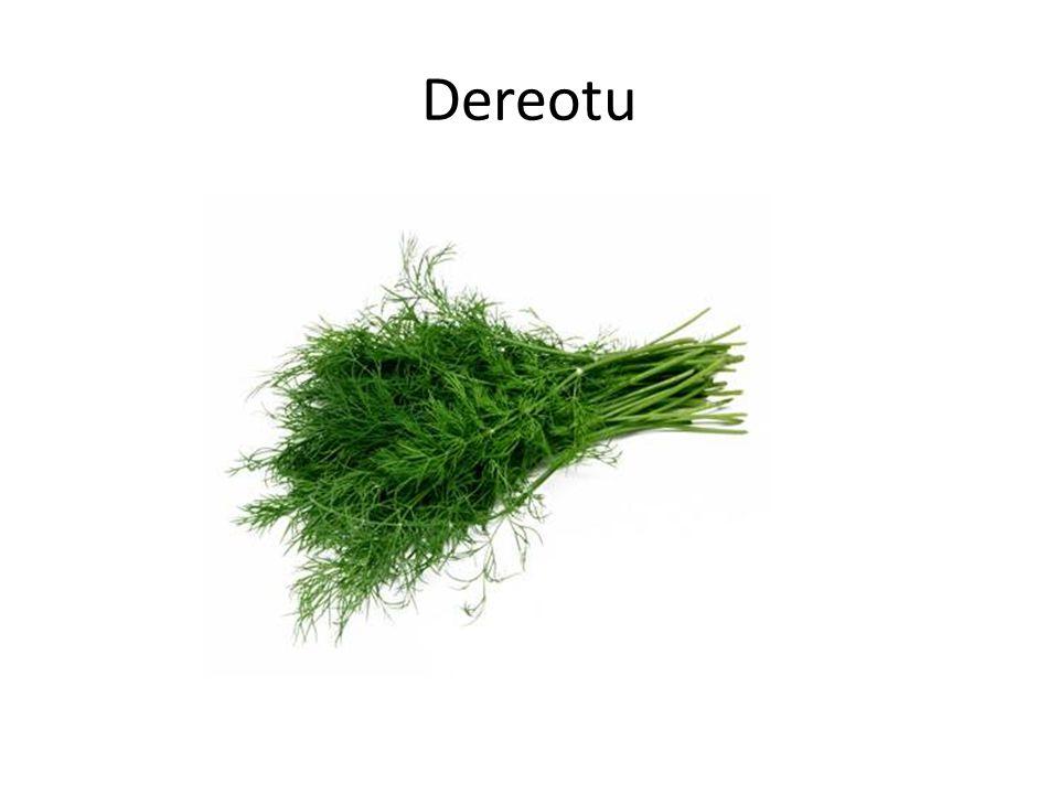 Dereotu