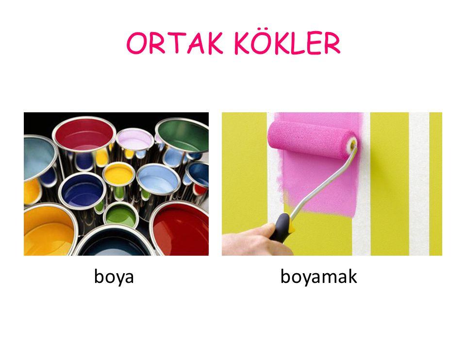 ORTAK KÖKLER boya boyamak