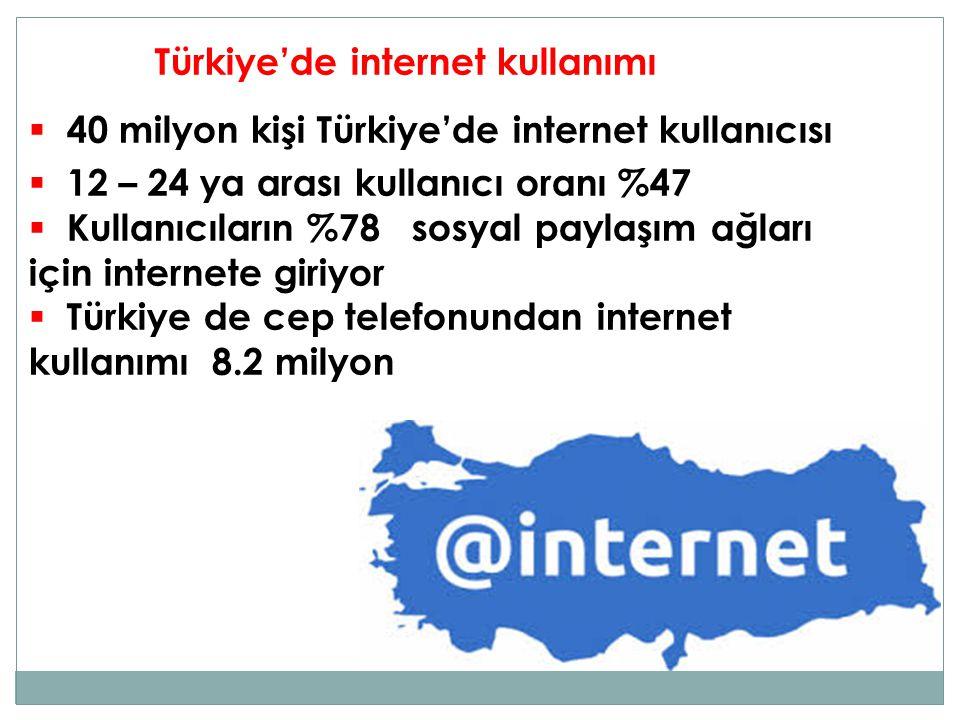 Türkiye'de internet kullanımı