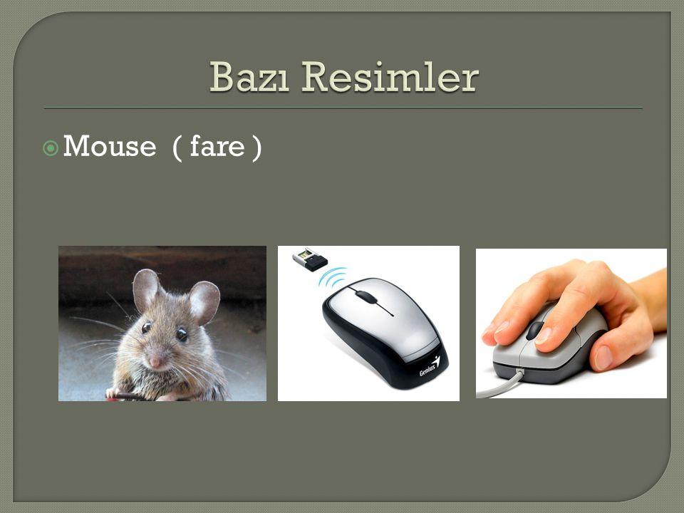 Bazı Resimler Mouse ( fare )
