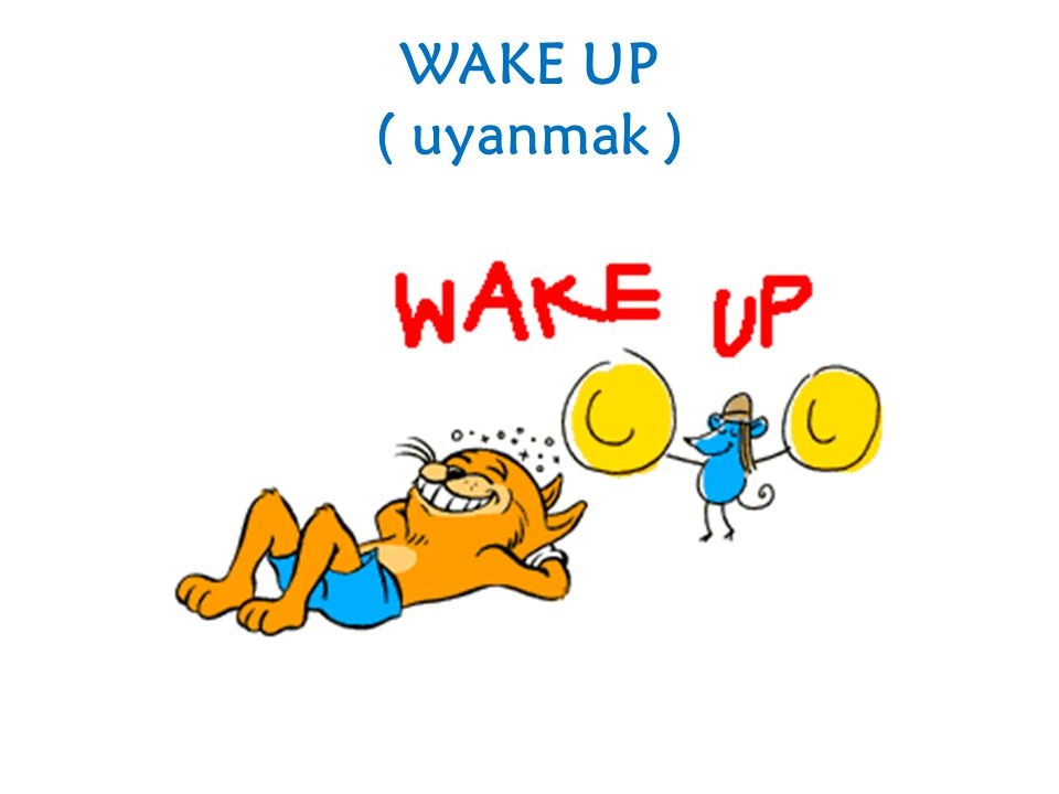 WAKE UP ( uyanmak )
