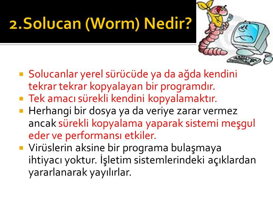 2.Solucan (Worm) Nedir Solucanlar yerel sürücüde ya da ağda kendini tekrar tekrar kopyalayan bir programdır.