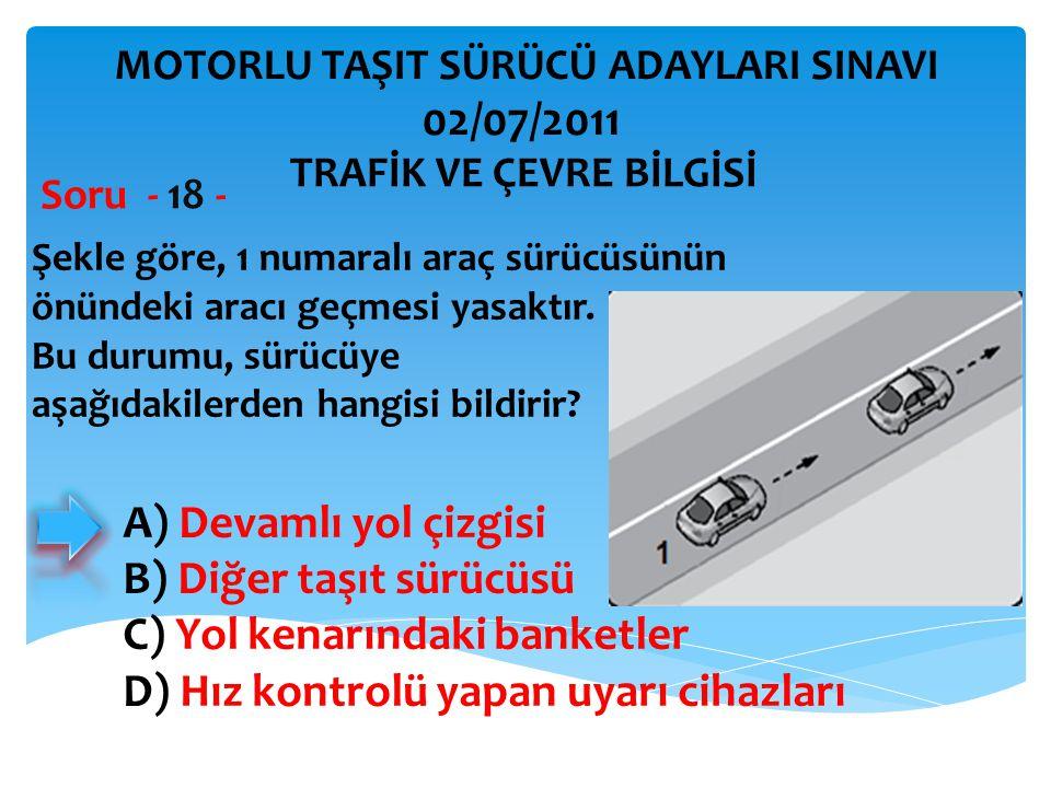 B) Diğer taşıt sürücüsü C) Yol kenarındaki banketler