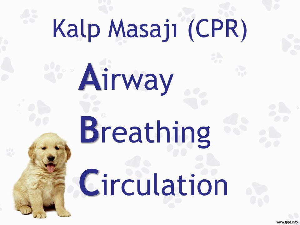 Kalp Masajı (CPR) Airway Breathing Circulation