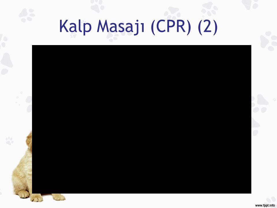 Kalp Masajı (CPR) (2)