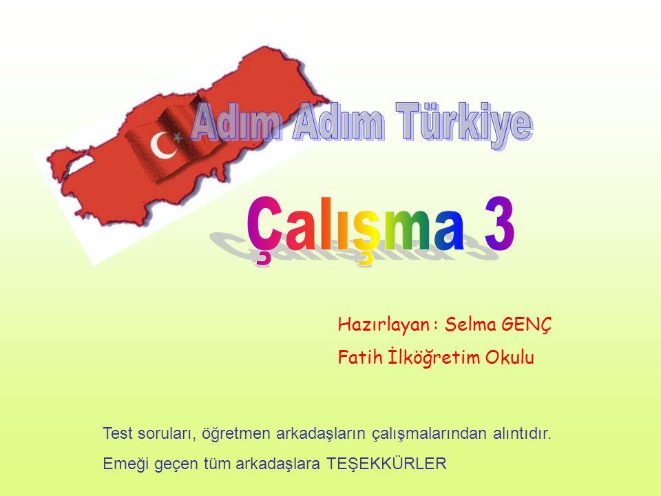 Çalışma 3 Adım Adım Türkiye Hazırlayan : Selma GENÇ