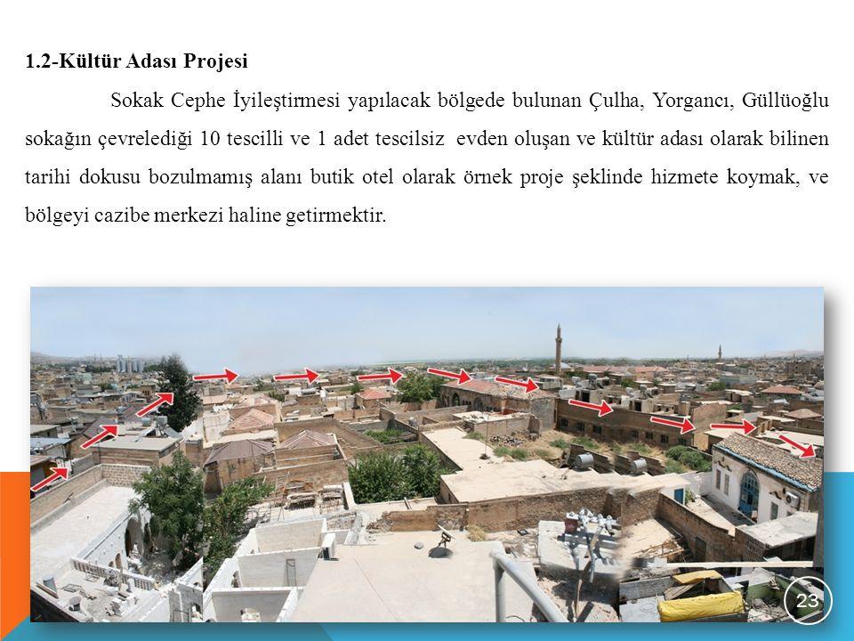 1.2-Kültür Adası Projesi