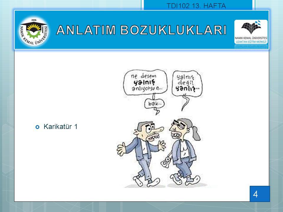 TDI102 13. HAFTA ANLATIM BOZUKLUKLARI Karikatür 1