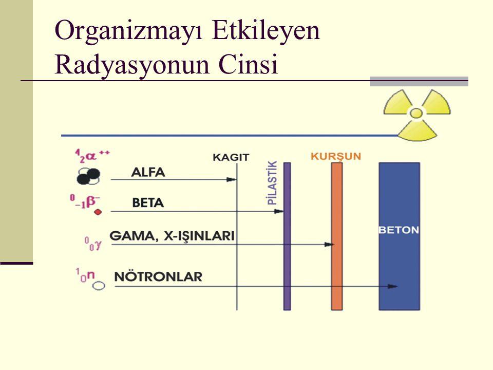 Organizmayı Etkileyen Radyasyonun Cinsi