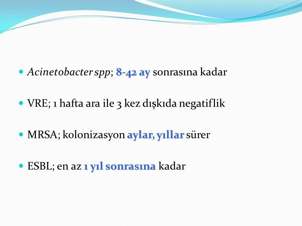 Acinetobacter spp; 8-42 ay sonrasına kadar