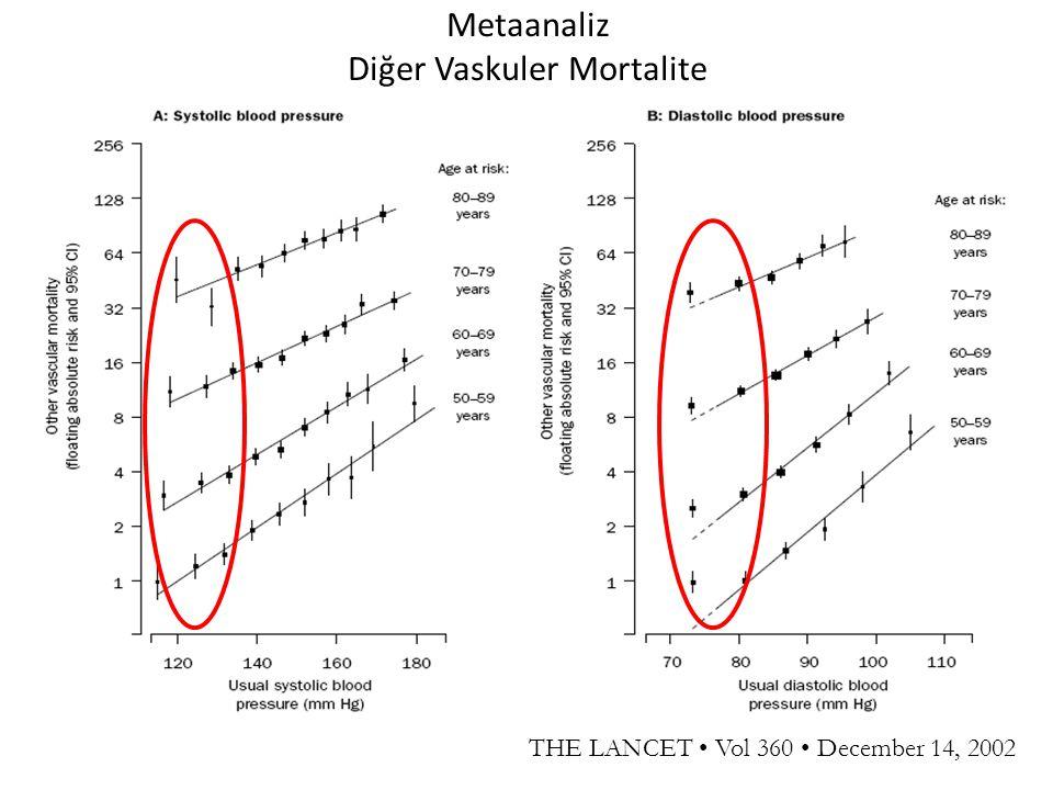 Metaanaliz Diğer Vaskuler Mortalite
