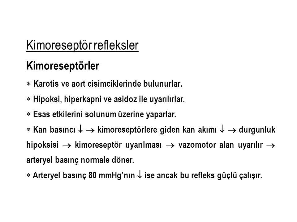 Kimoreseptör refleksler