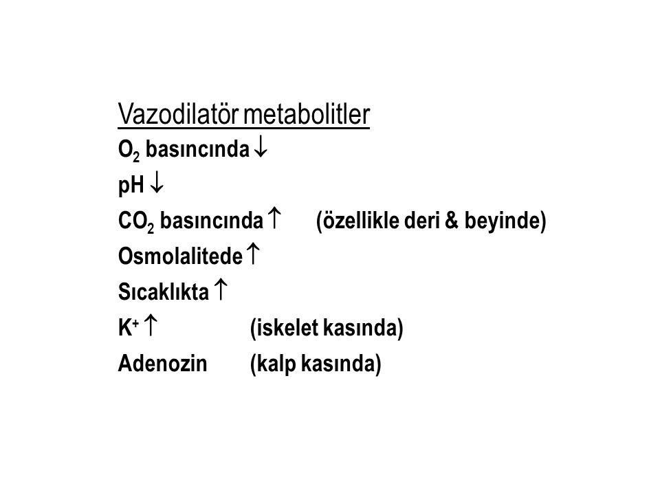 Vazodilatör metabolitler