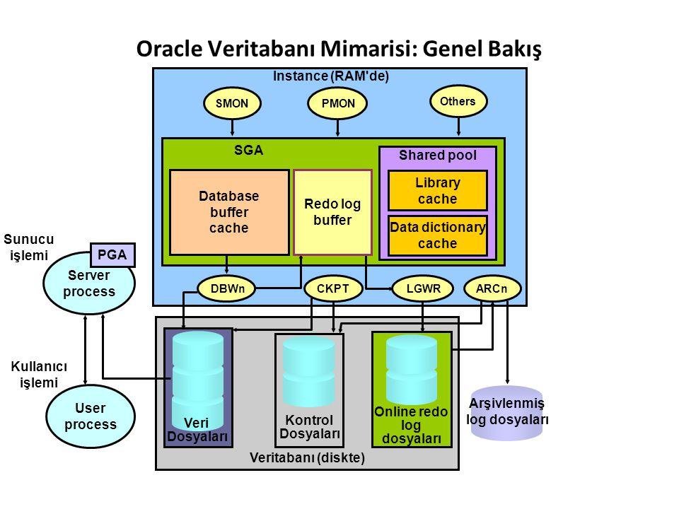 Oracle Veritabanı Mimarisi: Genel Bakış