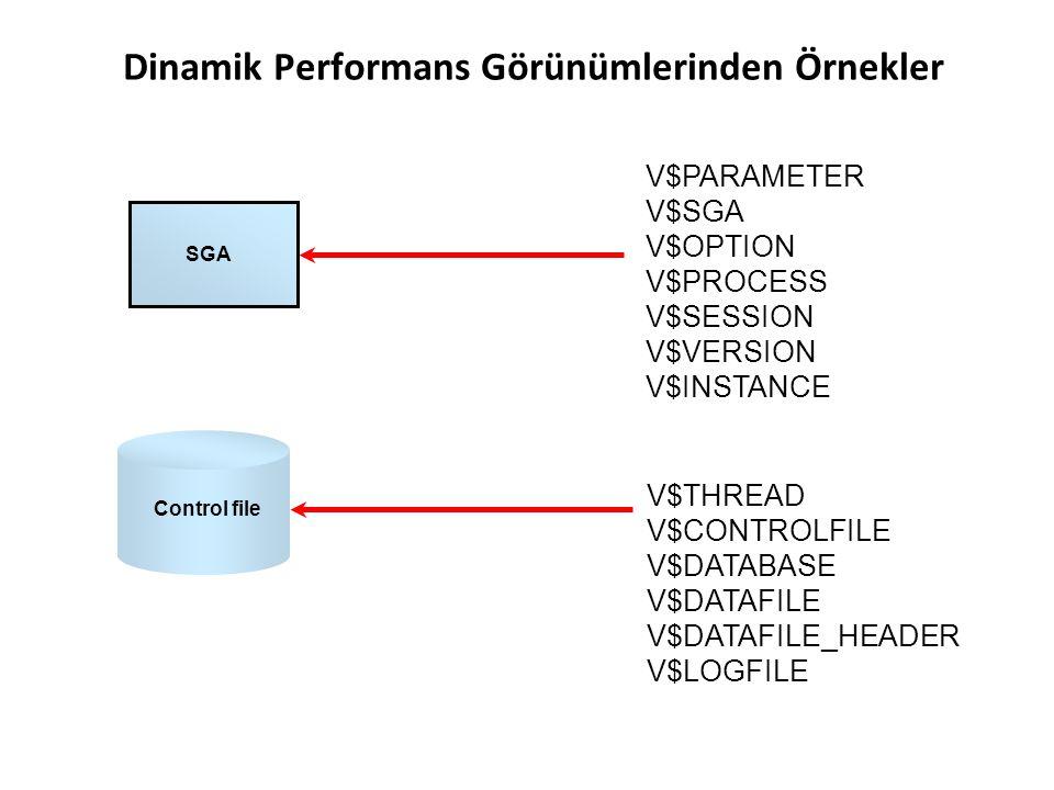Dinamik Performans Görünümlerinden Örnekler