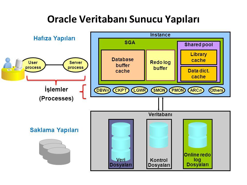 Oracle Veritabanı Sunucu Yapıları