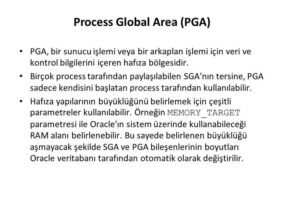 Process Global Area (PGA)