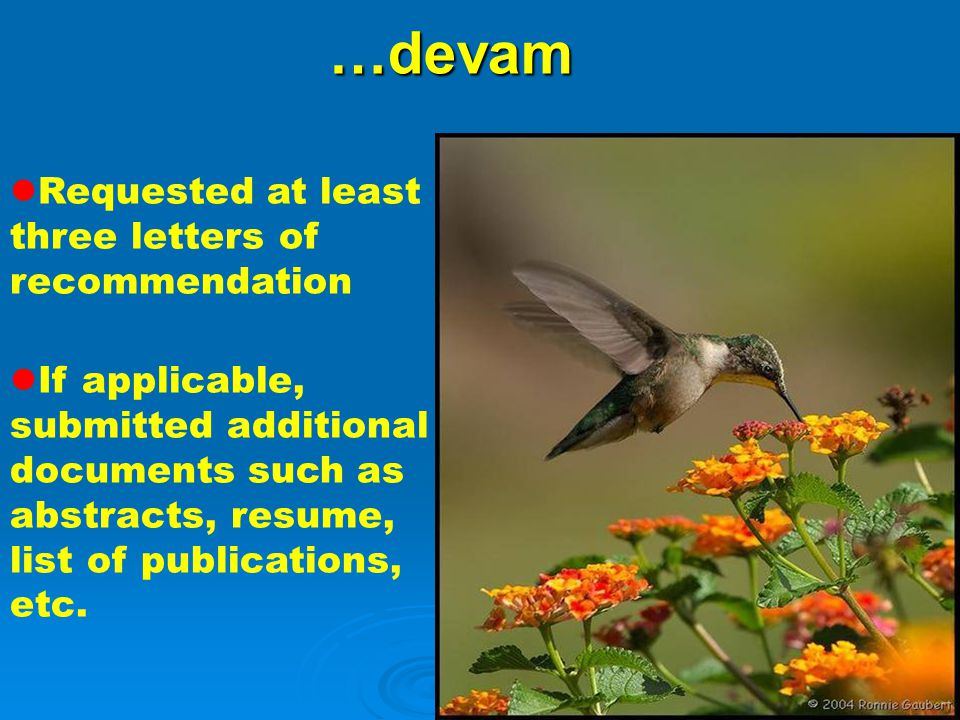 …devam Requested at least three letters of recommendation