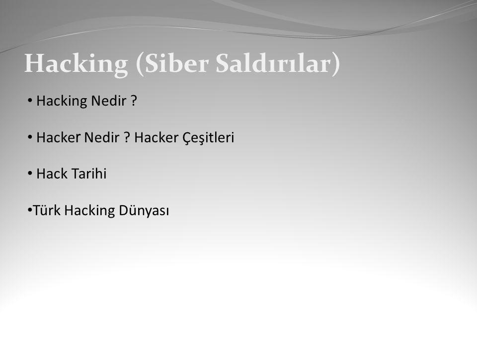 Hacking (Siber Saldırılar)