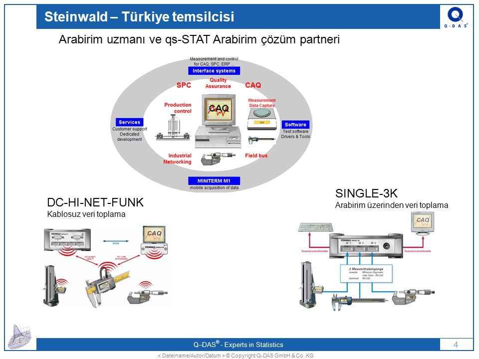 Steinwald – Türkiye temsilcisi