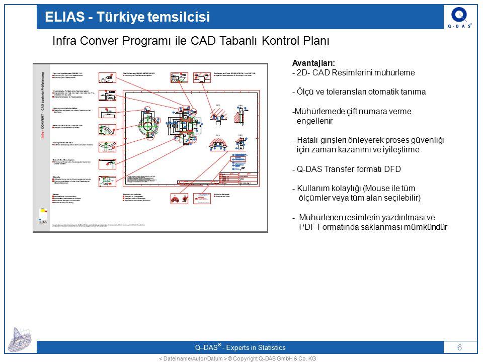 ELIAS - Türkiye temsilcisi